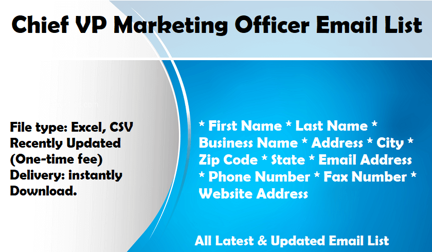 Chief VP Marketing Officer Email List